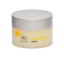 HOLY LAND C THE SUCCESS CREAM - Питательный крем с витамином С 250 мл